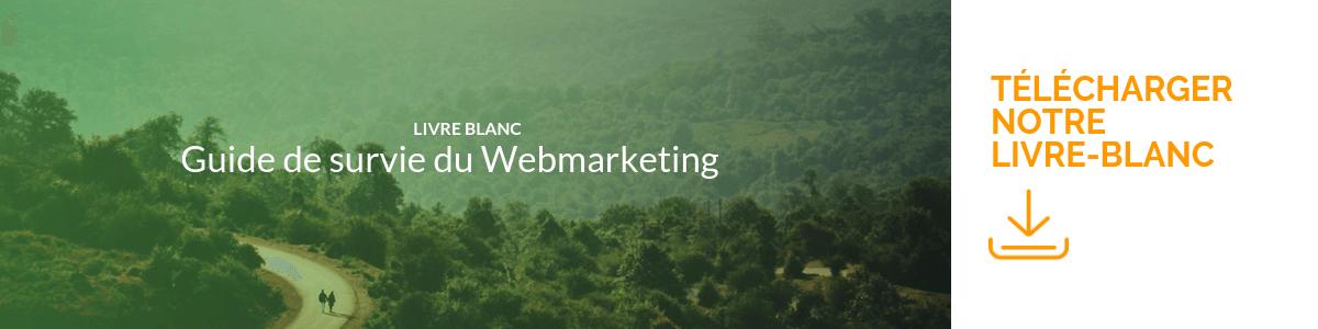 Bannière télécharger LB webmarketing